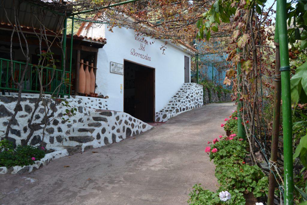 Plantaciones de café de Agaete. Plantaciones de Café en Agaete. Visitas plantaciones de café en Gran Canaria. Café en Agaete. Café Agaete.
